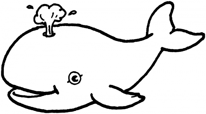 Whale Clipart Black And White