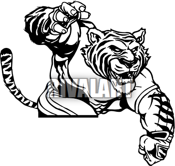 There Is 40 Tiger Scratch Free Cliparts All Used For Free