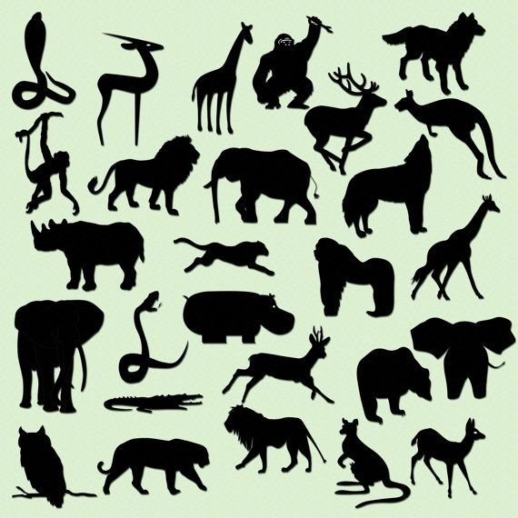 Silhouette Art Animal Silhouettes Jungles Room Elephant Silhouettes