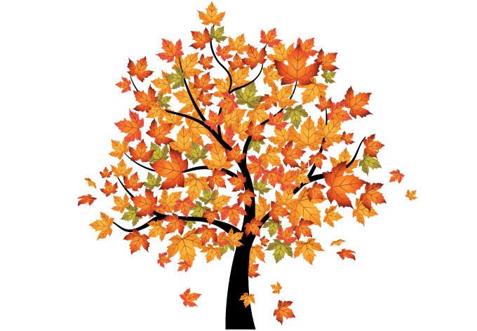 Clip Art Fall Trees Clipart autumn tree clipart kid enhanced cliparthut free clipart