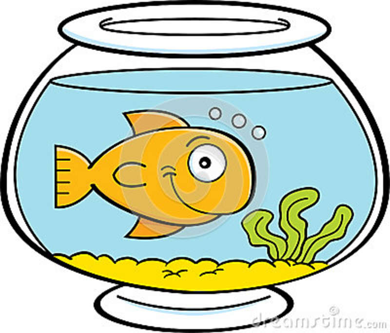 Gold Fish In A Bowl Clip Art   Clipart Panda   Free Clipart Images