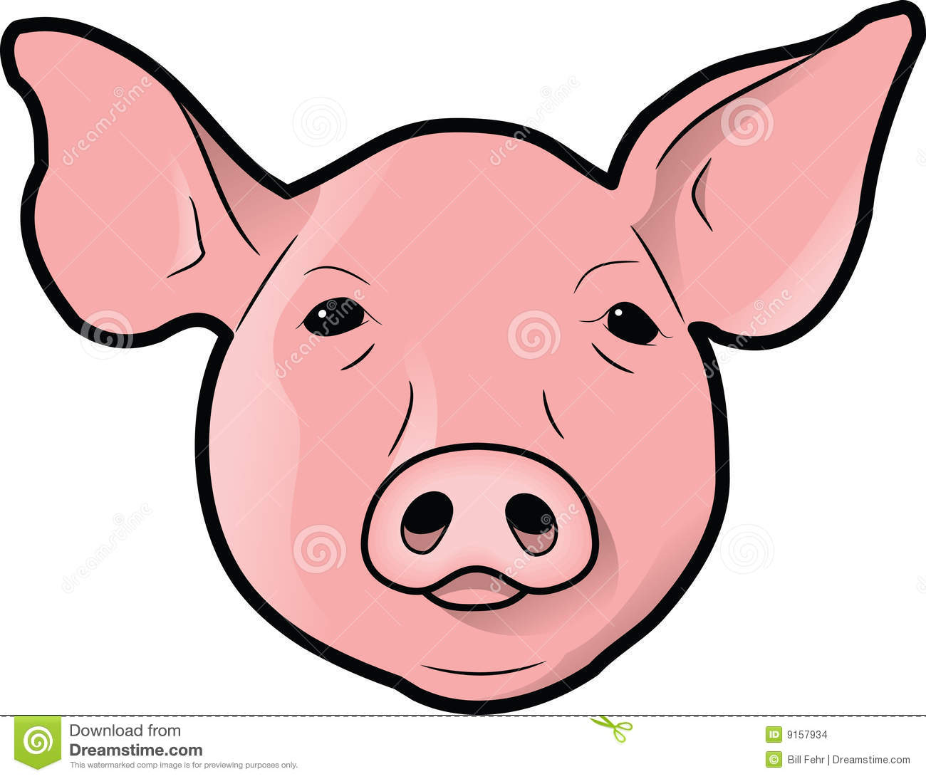 Pig S Head Stock Images   Image  9157934