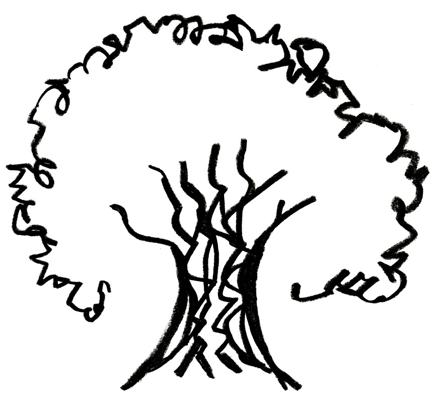 Tree Canopy Fund Update   Arlington Village Green Team