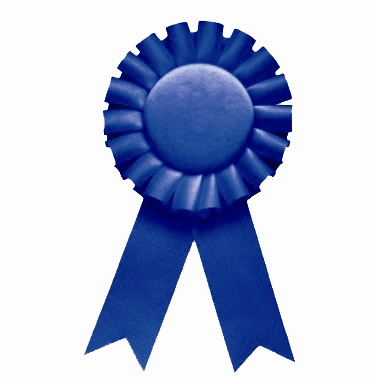 Sales Simulations   A Blue Ribbon Training Methodology