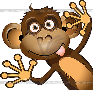 Funny Monkey   Vector Clipart