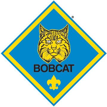 Cub Scout Pack 65 Advancement Information