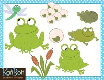 Frog Life Cycle And Pond  Free  Clipart By Kari Bolt  I Just Love Kari