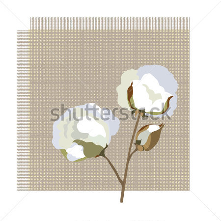 Cotton Fabric Icon With Cotton Jpg