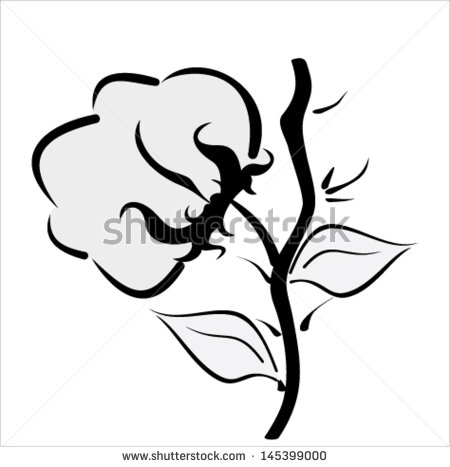 Cotton Field Clipart Stylized Cotton Icon In Vector