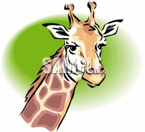 Giraffe Face Clipart - Clipart Suggest