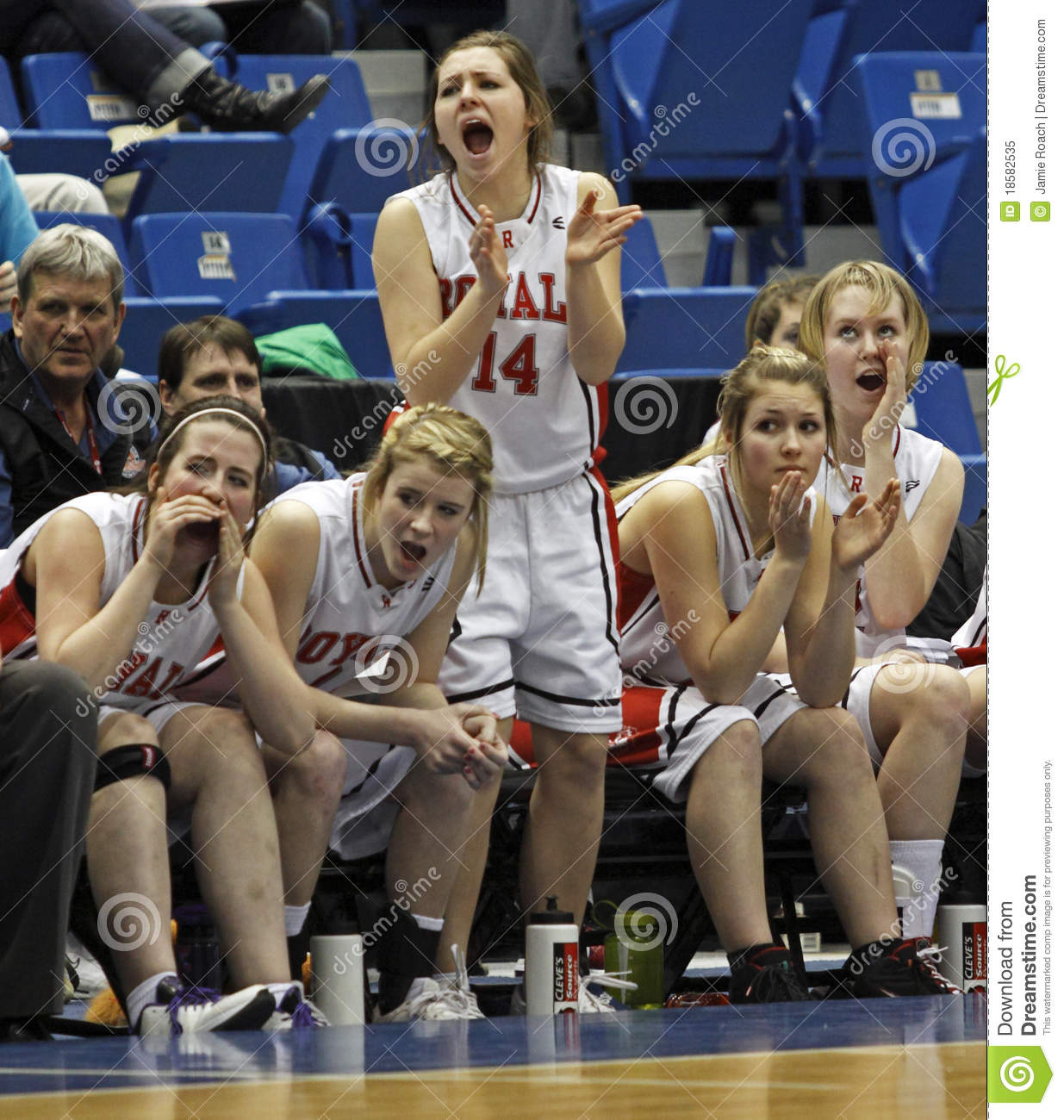 The Riverview Royals Bench Reacts To A Basket Against Woodstock At The