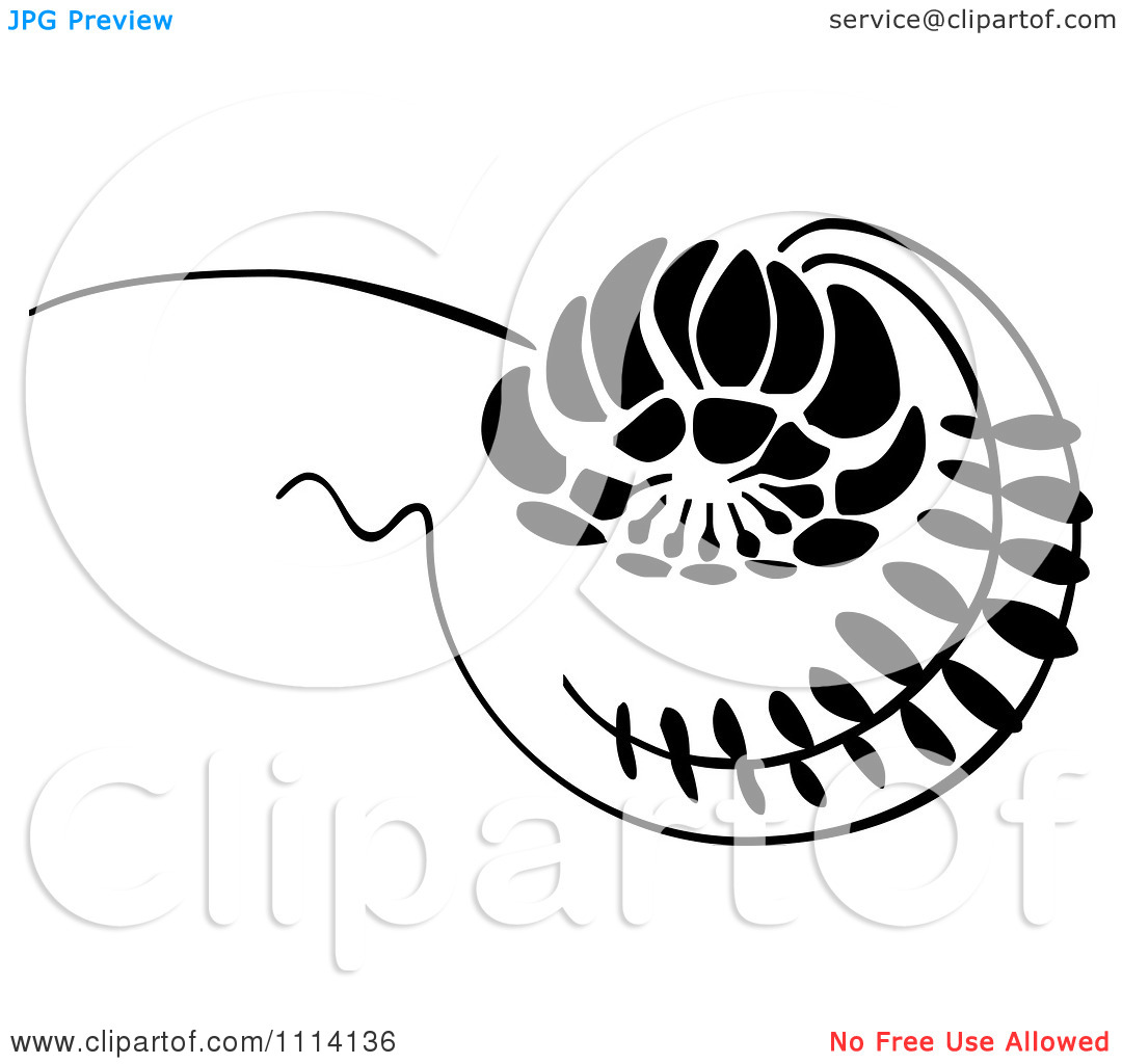 Clipart Black And White Floral Vine Scroll   Royalty Free Vector