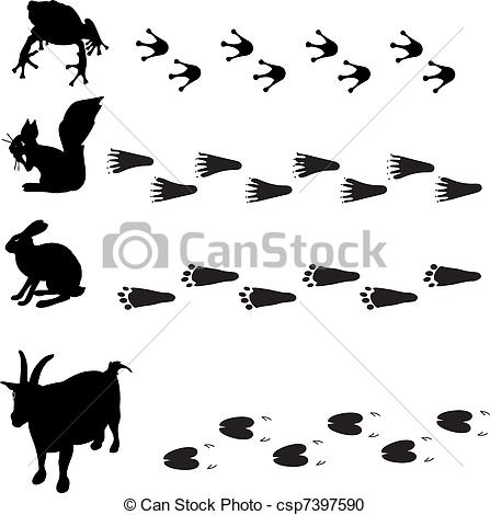 Squirrel Tracks Clip Art Animals And Their Tracks