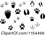 Squirrel Tracks Clip Art Clipart Of Silhouetted Animal