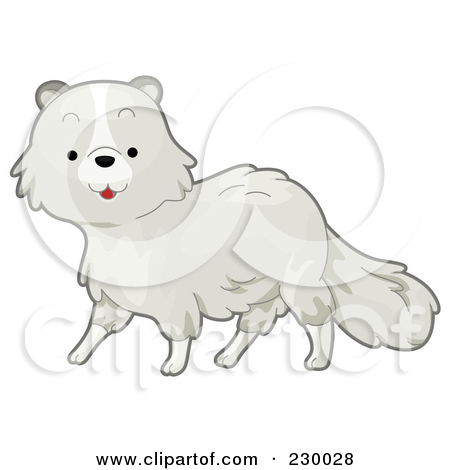 Royalty Free  Rf  Arctic Fox Clipart   Illustrations  1
