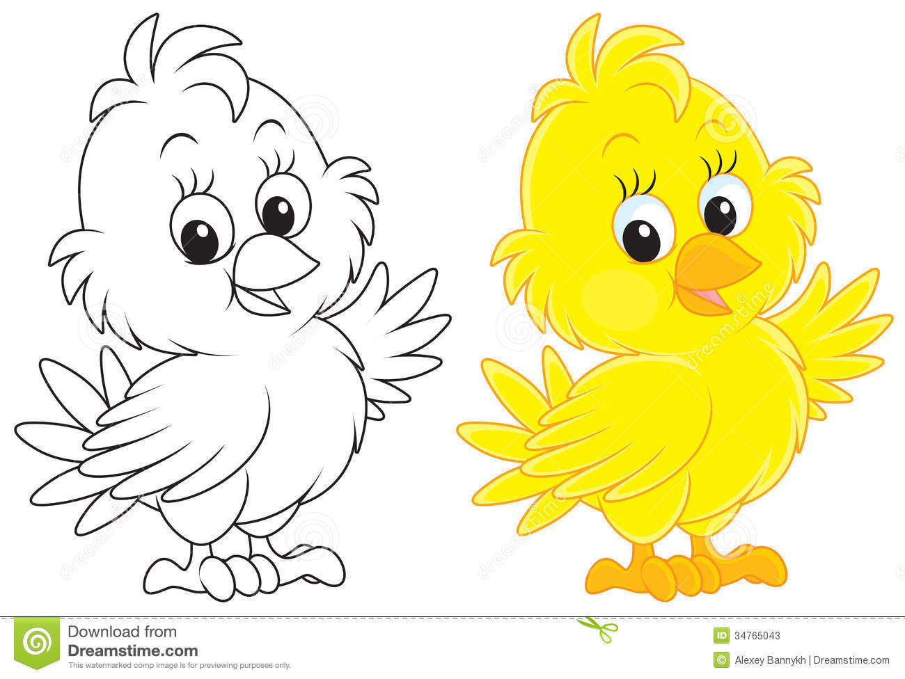 Little Yellow Chick Color And Black And White Outline Illustrations