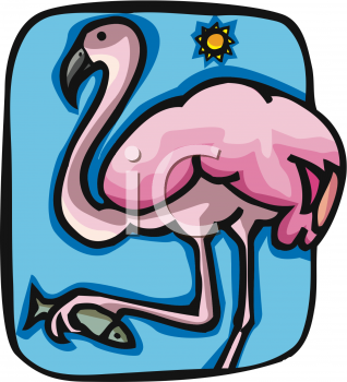 There Is 50 Pink Flamingo   Free Cliparts All Used For Free