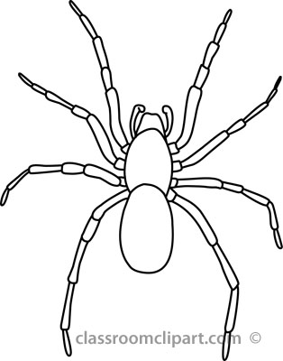Animals   House Spider Outline 03 22912   Classroom Clipart