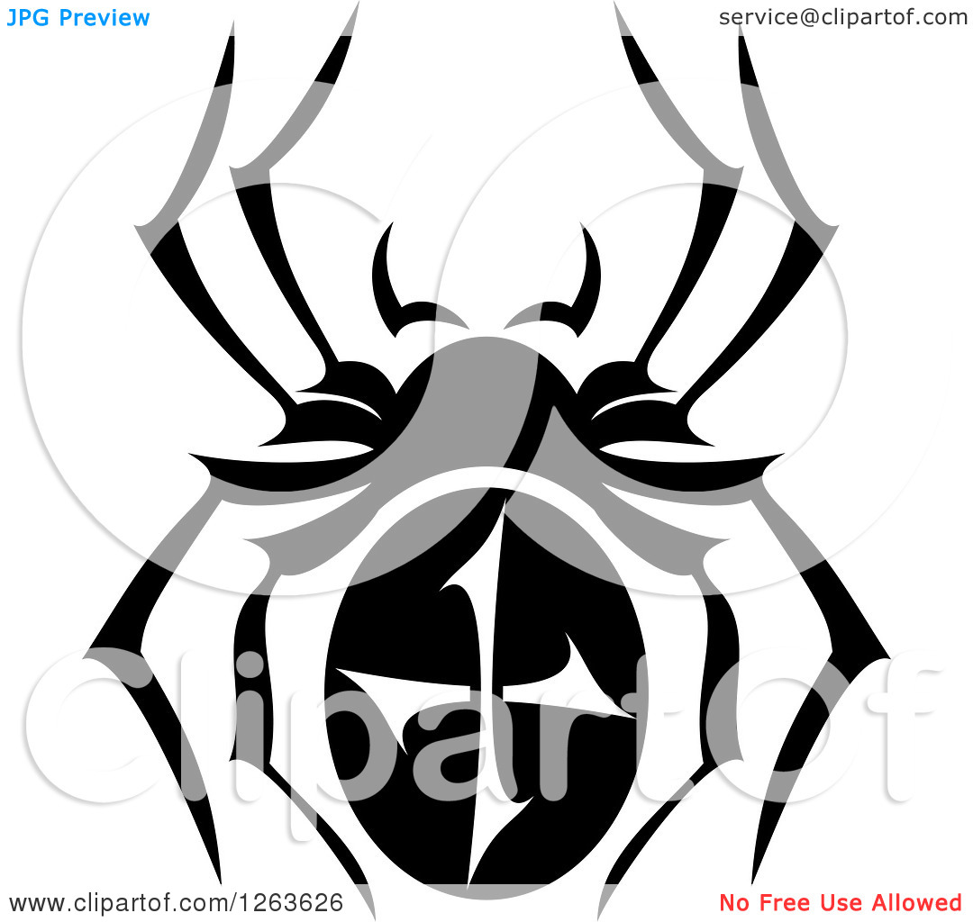 Clipart Of A Black And White Spider   Royalty Free Vector Illustration
