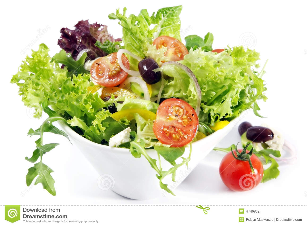 Tossed Salad Stock Photography   Image  4746802