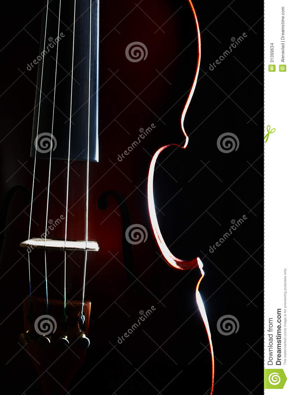 Violin Strings  Orchestral Musical Instrument Closeup Isolated On