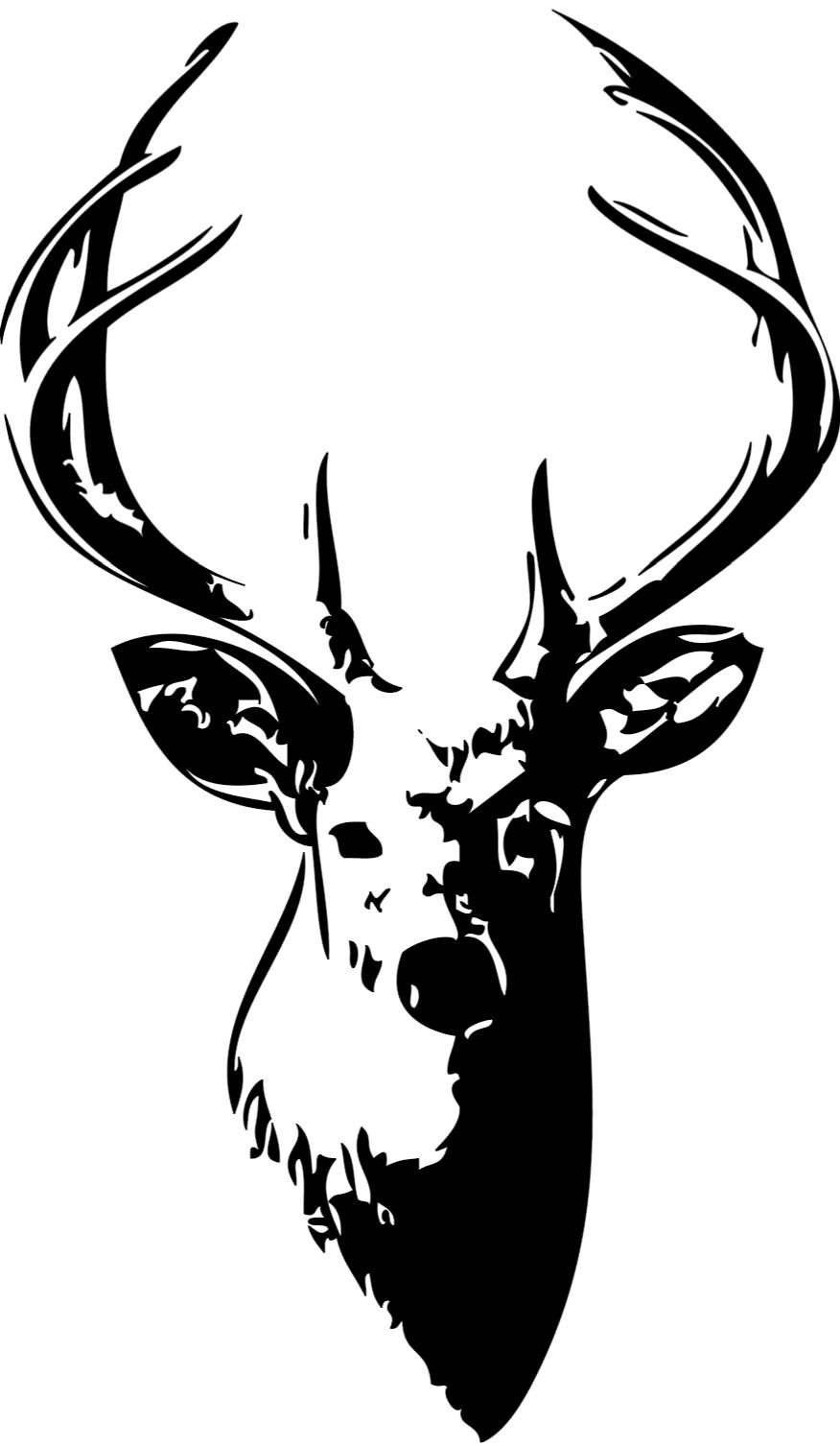 21 Whitetail Deer Skull Drawings   Free Cliparts That You Can Download