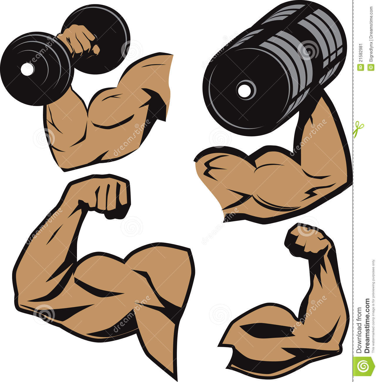 Clip Art Collection Of Muscular Weightlifter Arms