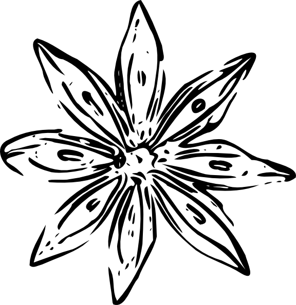 Clipart Flower Outline  Flower Outline Clip Art