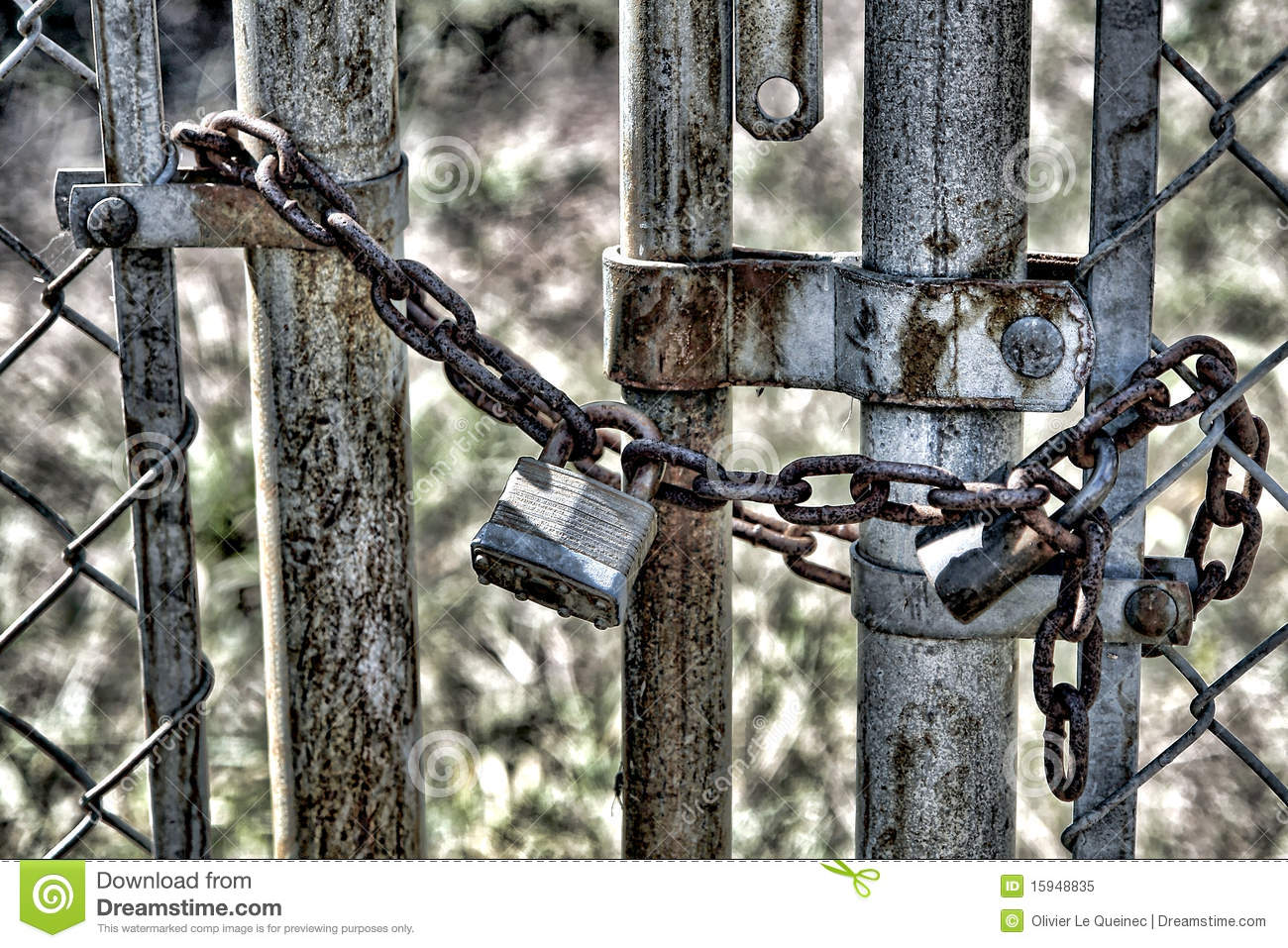 Padlock On A Chain Link Fence Gate Royalty Free Stock Photo   Image