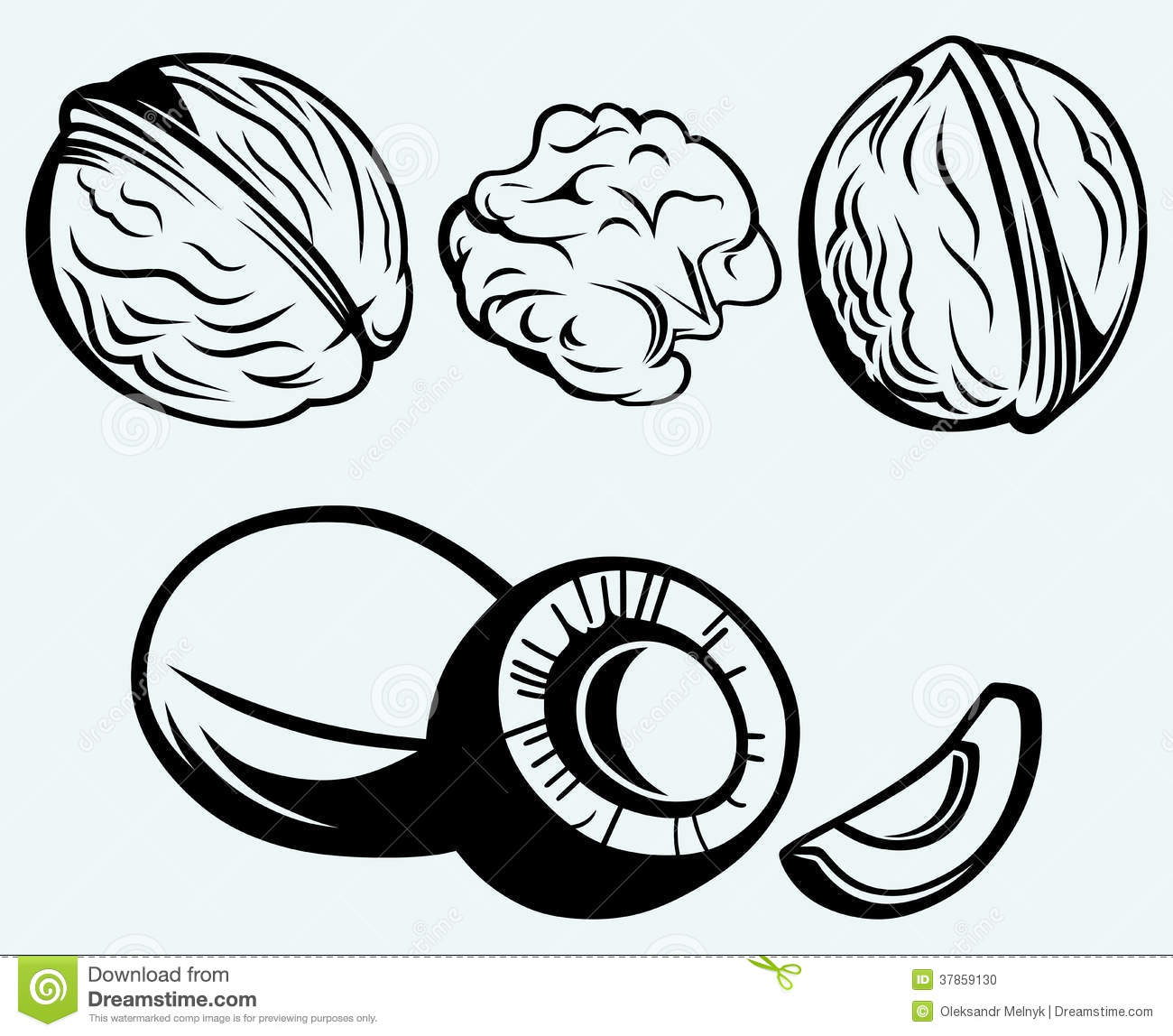 Artikel Terkait Walnut Clipart Black And White