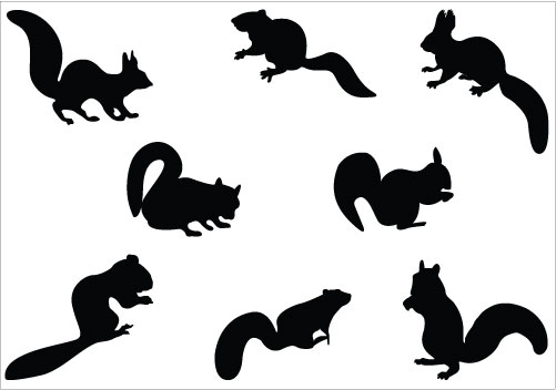 Cute Squirrel Silhouette   Clipart Panda   Free Clipart Images