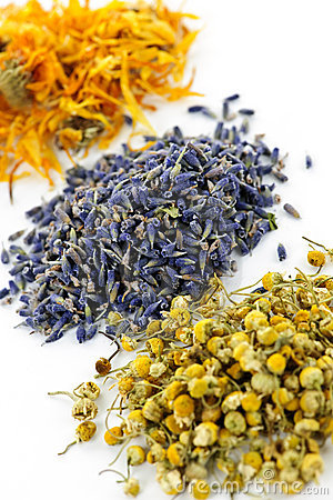 Piles Of Dried Medicinal Herbs Camomile Lavender Calendula On White