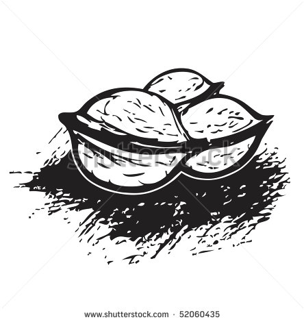 Walnut Clipart Black And White   Interior Design