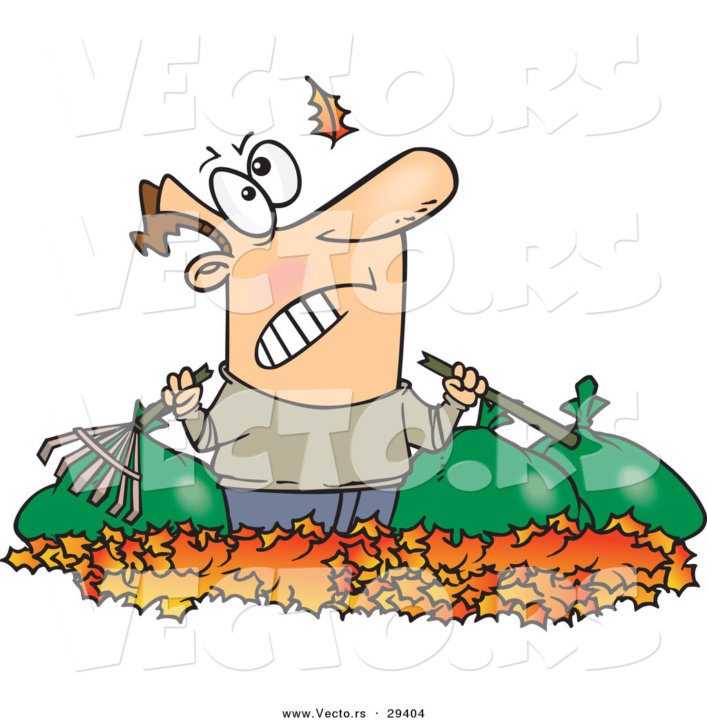 Watching Another Leaf Fall On His Piles And Bags Of Raked Autumn Leafs