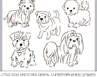 Digital Clipart Little Dog Sketche S  300 Dpi Png Files Brushes And