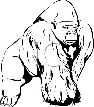 Gorilla Black And White Clipart - Clipart Suggest
