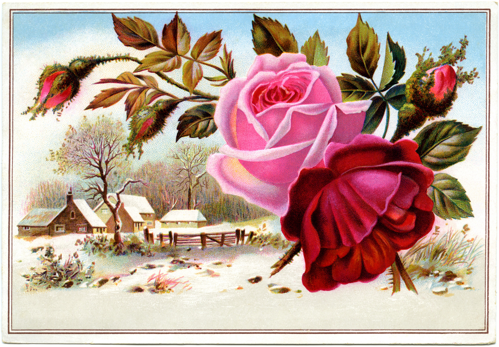 This Victorian Trading Card Features Pretty Pink And Red Flowers And A