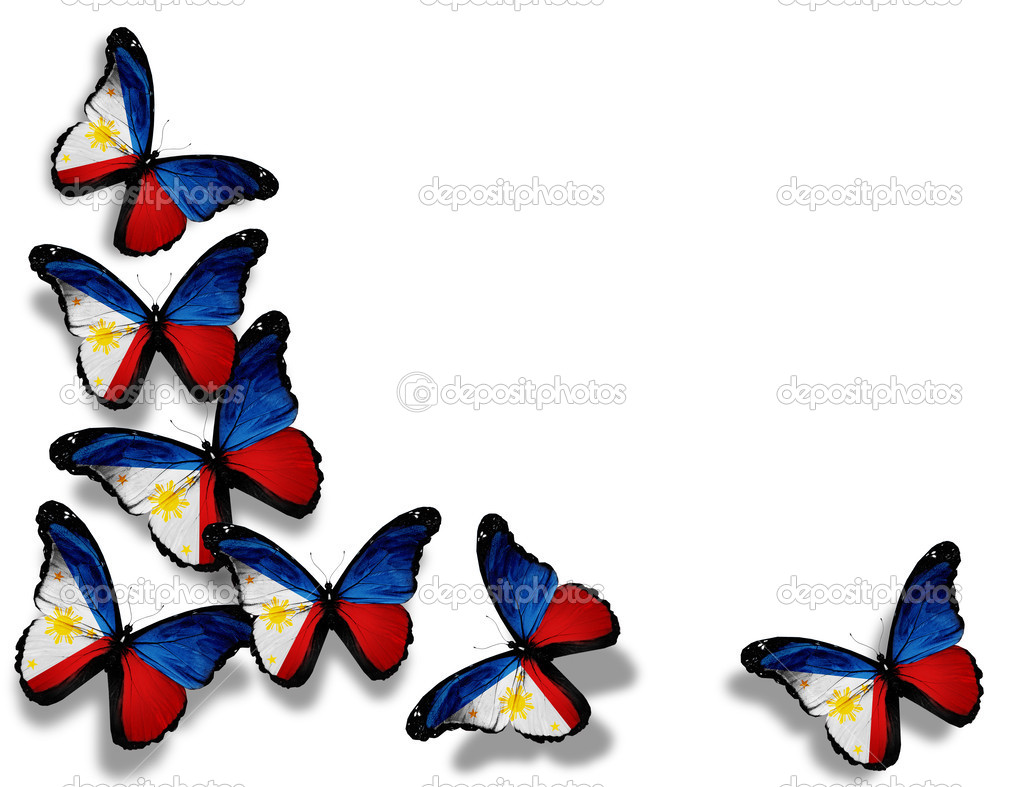 Philippine Flag Butterflies Isolated On White Background   Stock