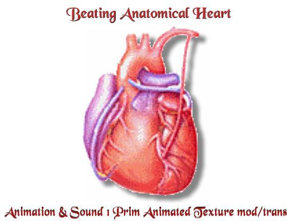 Animated Pumping Beating Explore An Animated Hearts Gifs Clipart
