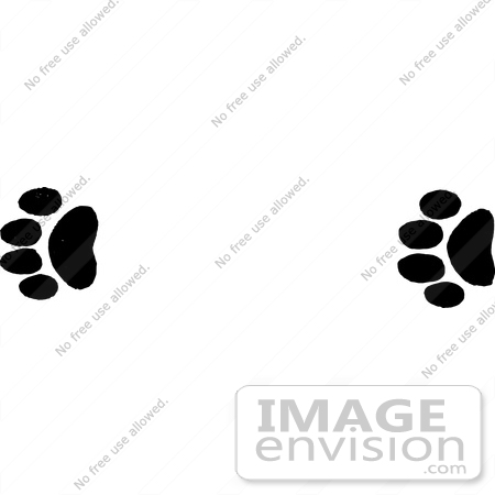 Free Clipart Illustration Of Mountain Lion Tracks In Black And White