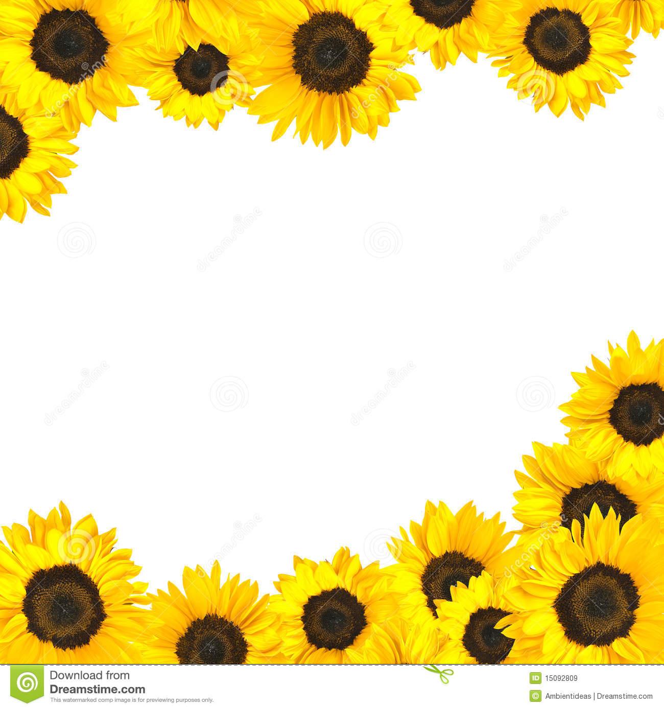 Sunflower Printable Clipart - Clipart Kid