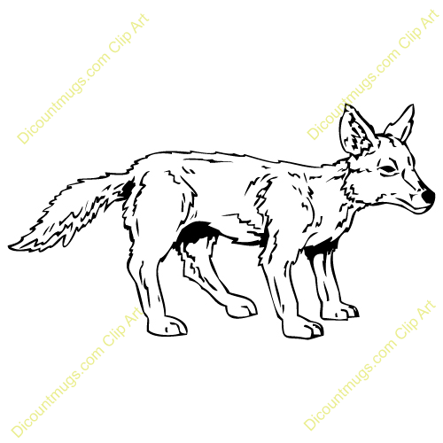 Coyote Clip Art - Synkee