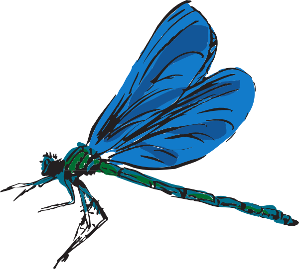 Dragonfly Cartoon Images Free Cliparts That You Can Download To You