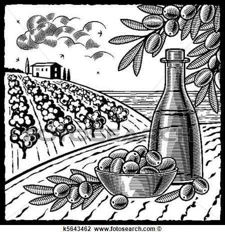 Olive Harvest Black And White View Large Clip Art Graphic