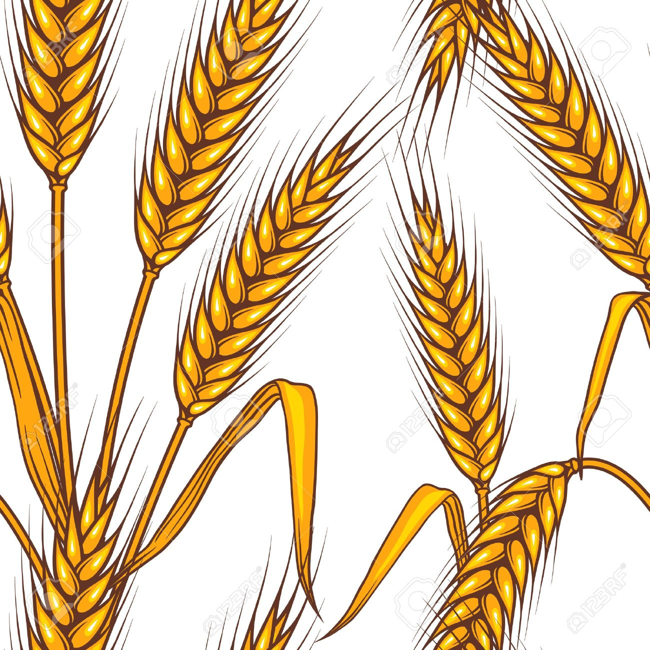 Barley Clipart - Clipart Suggest