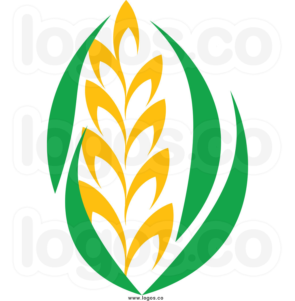 Barley Clipart Royalty Free Clip Art Vector Strand Of Wheat And Green