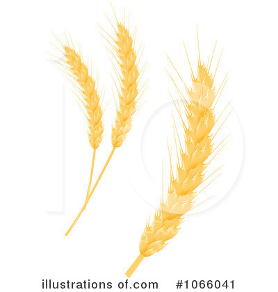 Clipart Barley Wheat Clipart Illustration