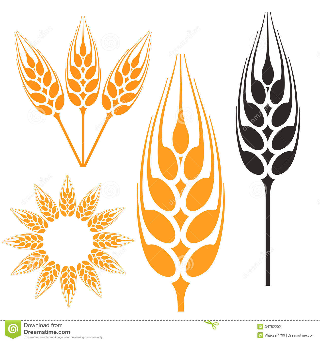 Hops And Barley Clip Art Barley Stock Photography