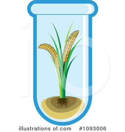 Single Barley Clipart