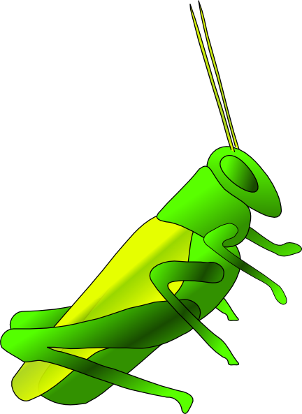 Cricket Clip Art At Clker Com   Vector Clip Art Online Royalty Free